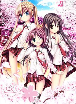 Sakura, Sakimashita.